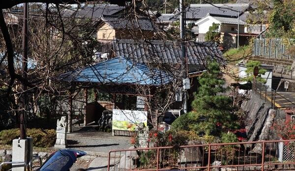 泉神社 湧水