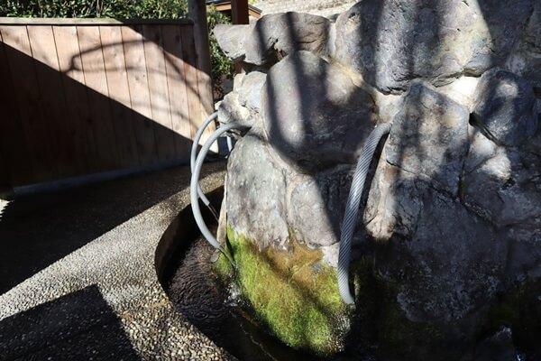 泉神社湧水の水