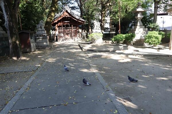 椿神社の境内