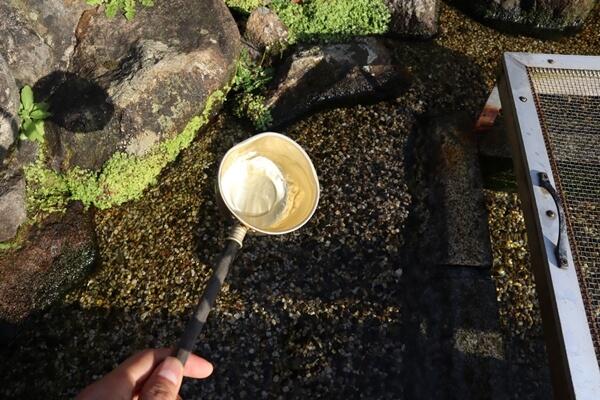 桜生水の水