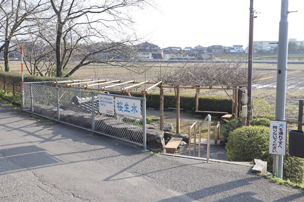 桜生水の道路沿い