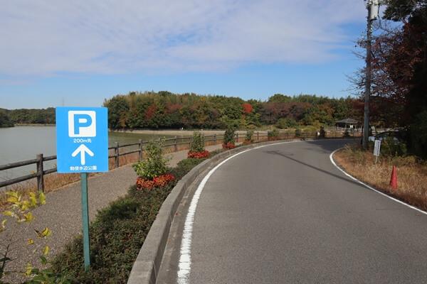 勅使水辺公園の道